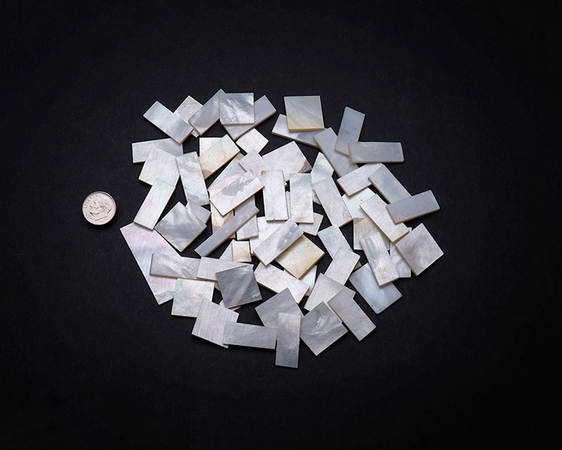 White Mother of Pearl Precision Cut Pieces