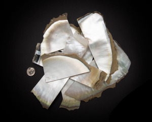 White Mother of Pearl Cut Strips and Pieces