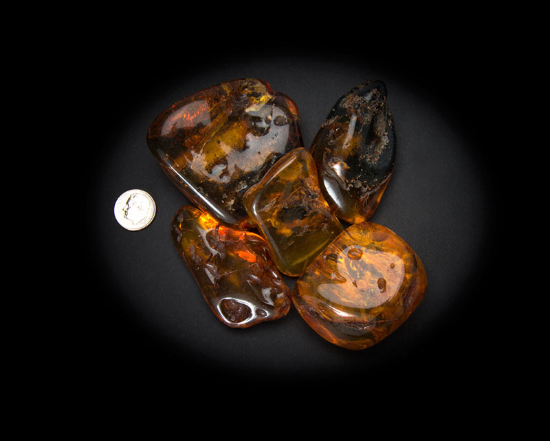 Baltic Amber Polished